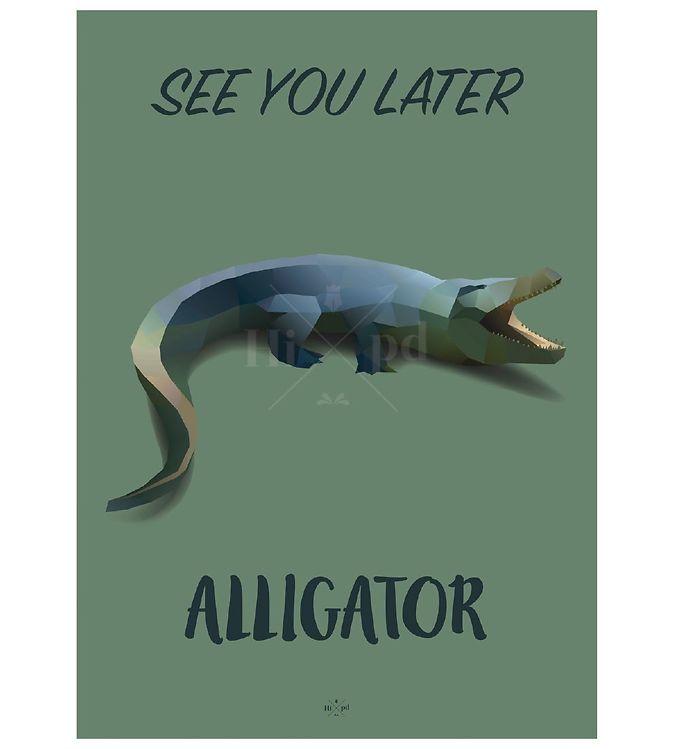 Billede af Hipd Plakat - A3 - Alligator