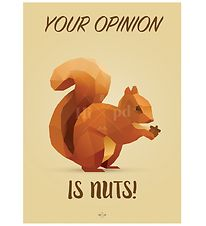 Hipd Plakat - A4 - Nuts