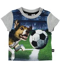 Molo T-shirt - Emilio - Dogs After Ball