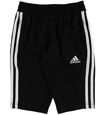 adidas Performance Shorts - Tiro 19 - Sort