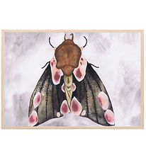 Thats Mine Plakat - 21x30 - A Moth's Beauty