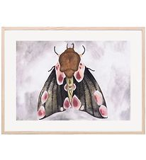 Thats Mine Plakat - 30x40 - A Moth's Beauty