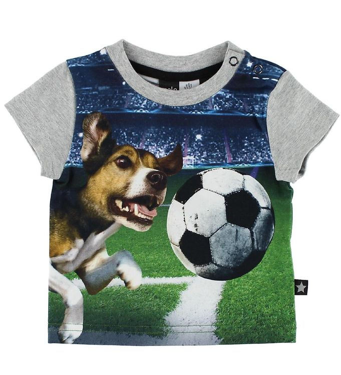 Image of Molo T-shirt - Emilio - Dogs After Ball (IC124)