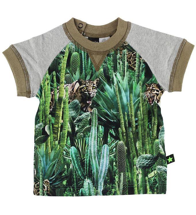 Image of Molo T-shirt - Eton - Cactus Bite (IH520)