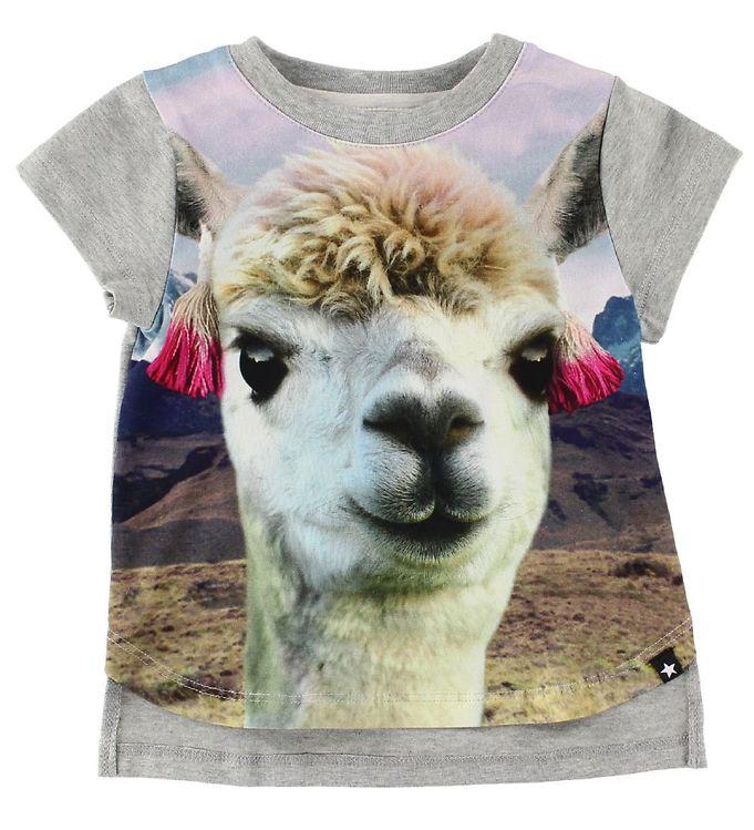 Image of Molo T-Shirt - Erin - Lama (IR589)