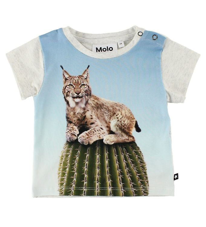 Image of Molo T-Shirt - Eddie - Cactus Cat (IS882)