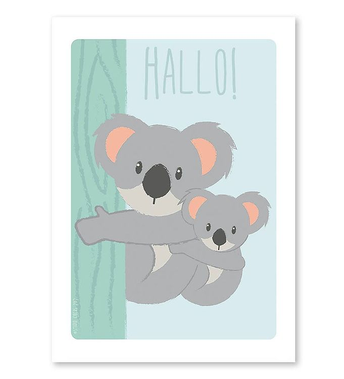 Image of Studio Circus Plakat - A4 - Koalaer m. Hallo (MF574)