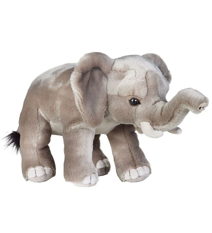 Image of   National Geographic Bamse - 36 cm - Afrikansk Elefant