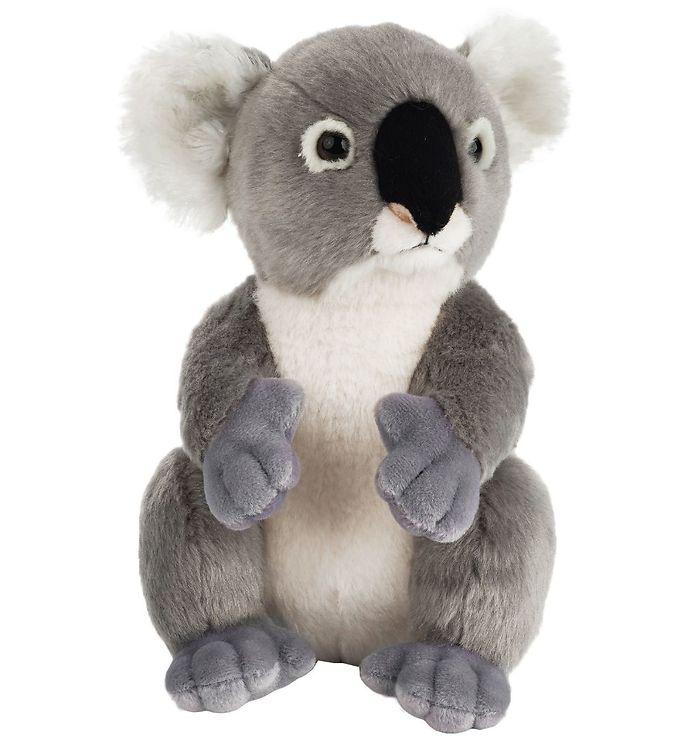 Image of National Geographic Bamse - 23 cm - Koala (MZ748)